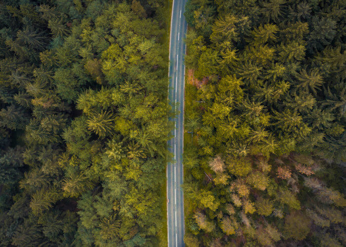 view from above of road through trees featured-700x500